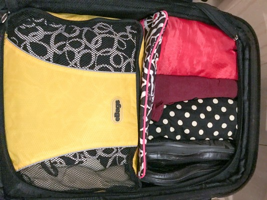 My eBag packing cube on the left contains clothing while I roll other items next to it.