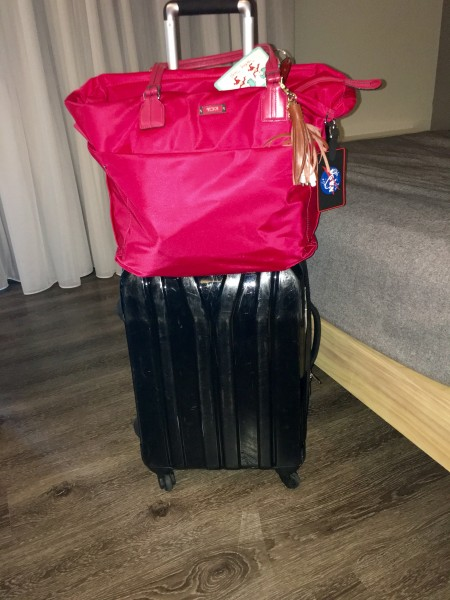 How do you travel to Europe for 30 days with just a carryon? Find out more from WanderWithWonder.com