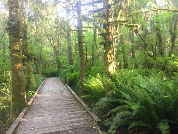 Kilchis Point Reserve Bay City Oregon