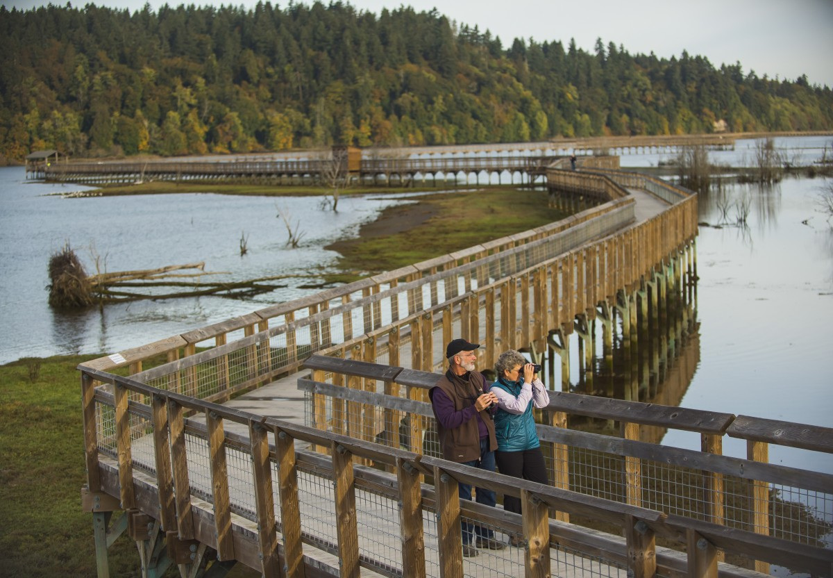 Splendid Discoveries in Olympia, Washington and Beyond