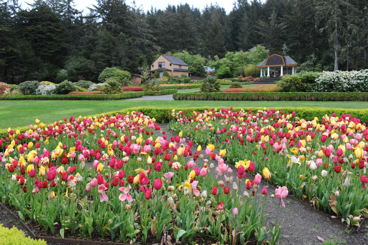 Visiting the gardens at Shore Acres State Park is a relaxing thing to do in Coos Bay.