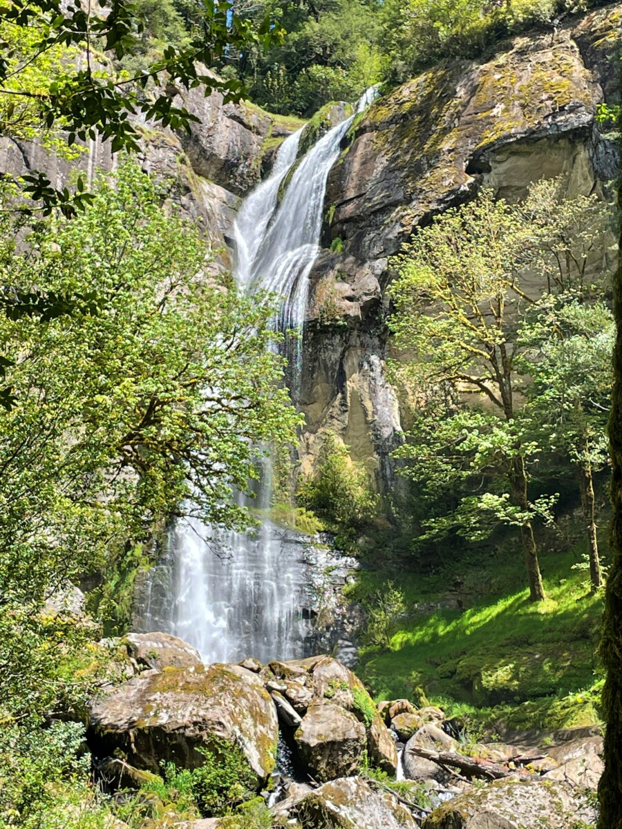 Hiking Golden Falls is a fun thing to do in Coos Bay.