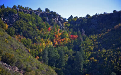 5 Great Arizona Road Trips